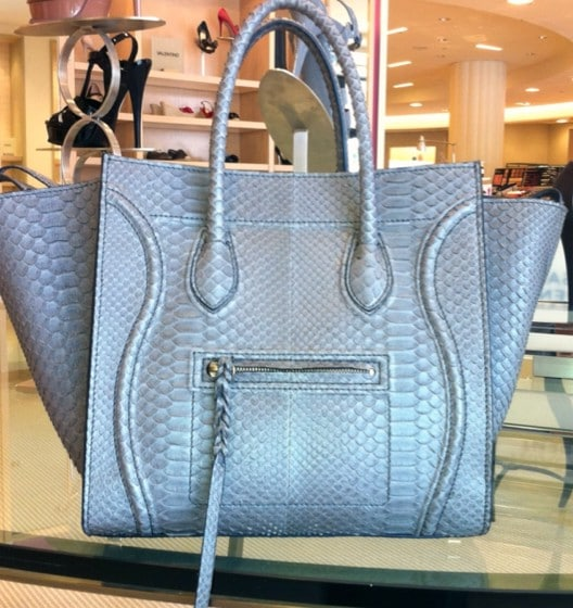 c13af20f75 Celine Grey Python Phantom Bag no front logo