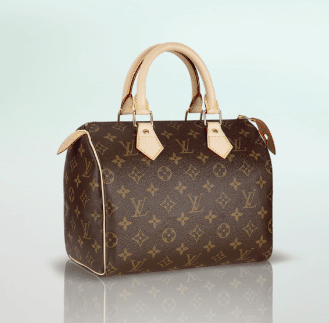 Speedy Louis Vuitton 25