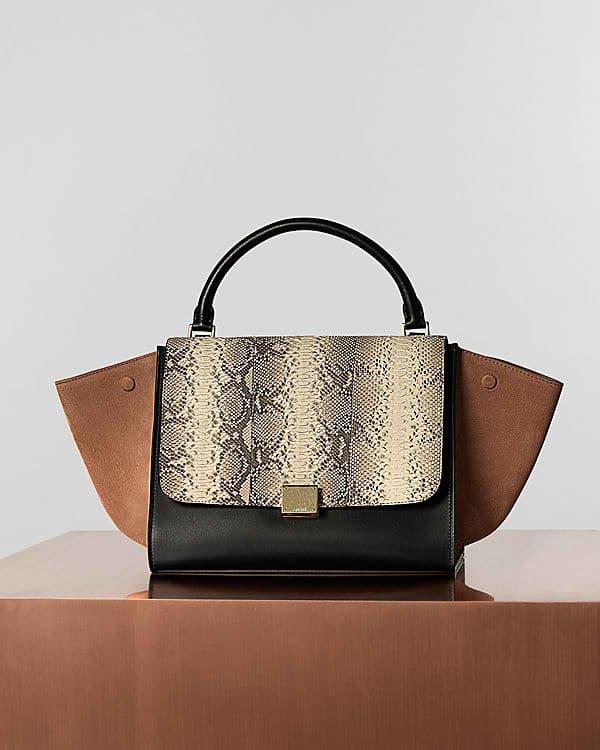 Celine Black Python Bag from Anns Fabulous Finds