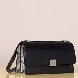 Celine Python Case Bag - Summer 2013