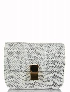 Celine White Box Bag in Whipsnake Python - 3