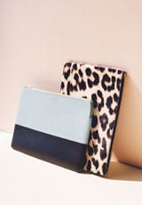celine bag online shopping - Celine-Glacier-Solo-Clutch-Pouch-Celine-Leopard-Pony-Black-and-Solo-Clutch-Pouch-.jpg