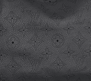 Louis Vuitton Black Mahina