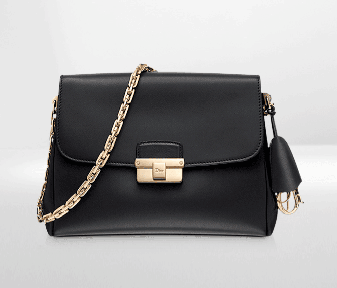 Dior Diorling Bag Reference Guide – Spotted Fashion