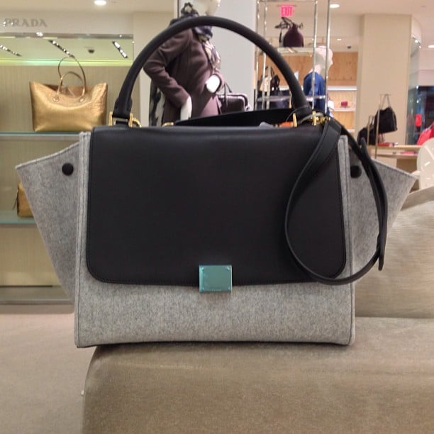 celine grey luggage bag