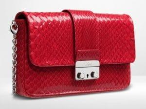 Dior Vine Red Python New Lock Pouch Bag