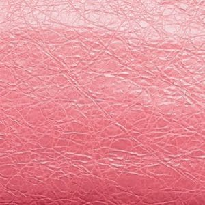 Balenciaga Light Pink Rouge Peche Fall 2013