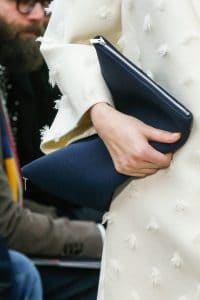 Celine Berlingot Clutch bag 6