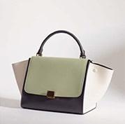 Celine Light Green Tricolor Trapeze Bag