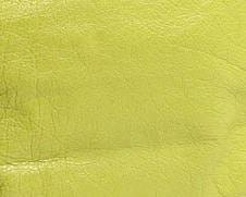 Balenciaga Jaune Poussin/Chartreuse