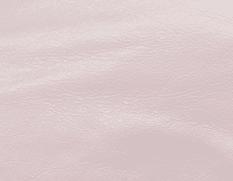 Balenciaga Rose Poudre/Powder Pink