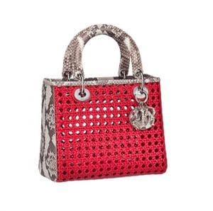 Lady Dior Mesh Pink Tri Color Python Bag - Spring 2014