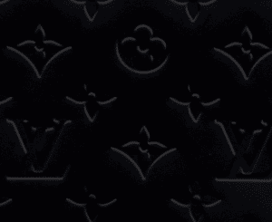 Louis Vuitton Monogram Vernis Noir Magnetique