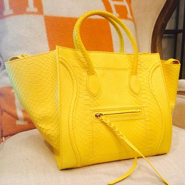 0f24f5e5775 Celine Yellow Primary Python Phantom Bag - Summer 2014. Instagram   priveporter