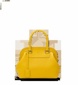 Fendi Selleria Adele Bag in Sunflower