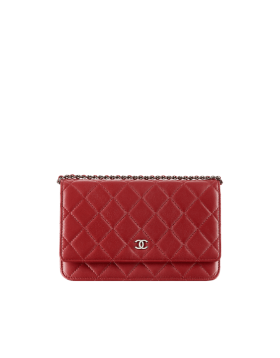 323df86a8c0ff Chanel Wallet on Chain Bags for Spring   Summer 2014