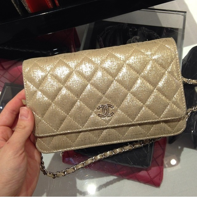 d53ec0638f60 Chanel Wallet on Chain Bags for Spring / Summer 2014 | Spotted Fashion