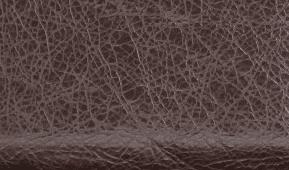 Balenciaga Charbon/Dark Brown