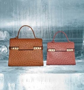 Delvaux Vegetal/Bois de Rose Ostrich Tempete GM and MM Bags - Fall 2014