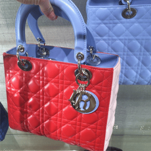 Fior Red/Light Blue/Pink Lady Dior Small Bag - Cruise 2015