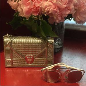 Dior Silver Metallic Perforated Diorama Mini Bag