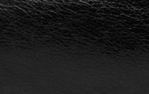 Balenciaga Noir