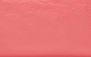 Balenciaga Rose Jaipur