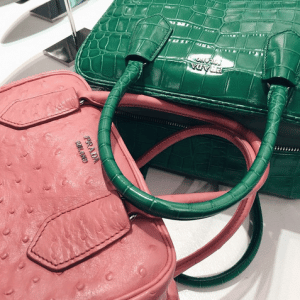 Prada Pink Ostrich and Green Crocodile Inside Bags