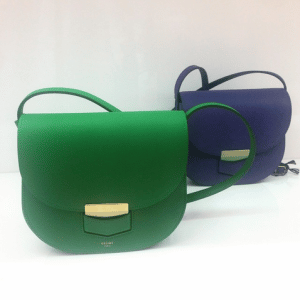 Celine Green and Indigo Trotteur Bags