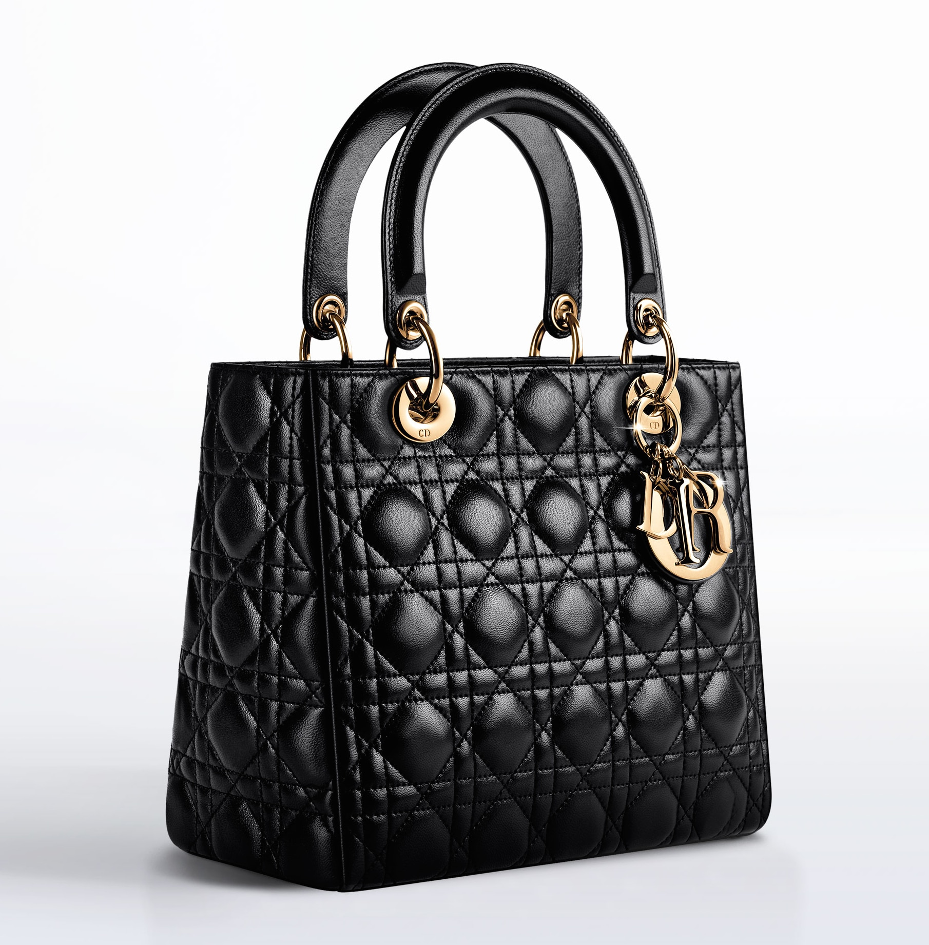 Lady Dior Bag Reference Guide