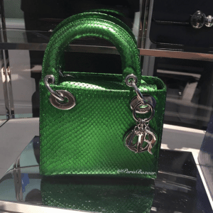 Dior Green Python Lady Dior Mini Bag - Cruise 2016