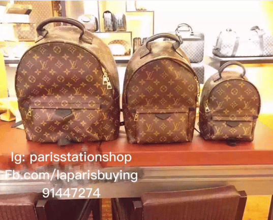 Louis Vuitton Palm Springs Backpack Bag Reference Guide
