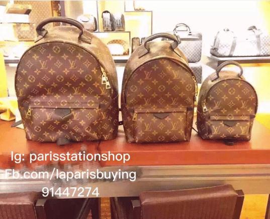 Louis Vuitton Monogram Canvas Palm Springs Backpack Bags
