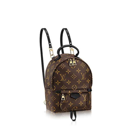 Louis Vuitton Monogram Canvas Palm Springs Backpack Mini Bag