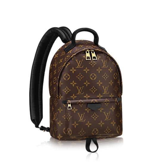 Louis Vuitton Monogram Canvas Palm Springs Backpack PM Bag