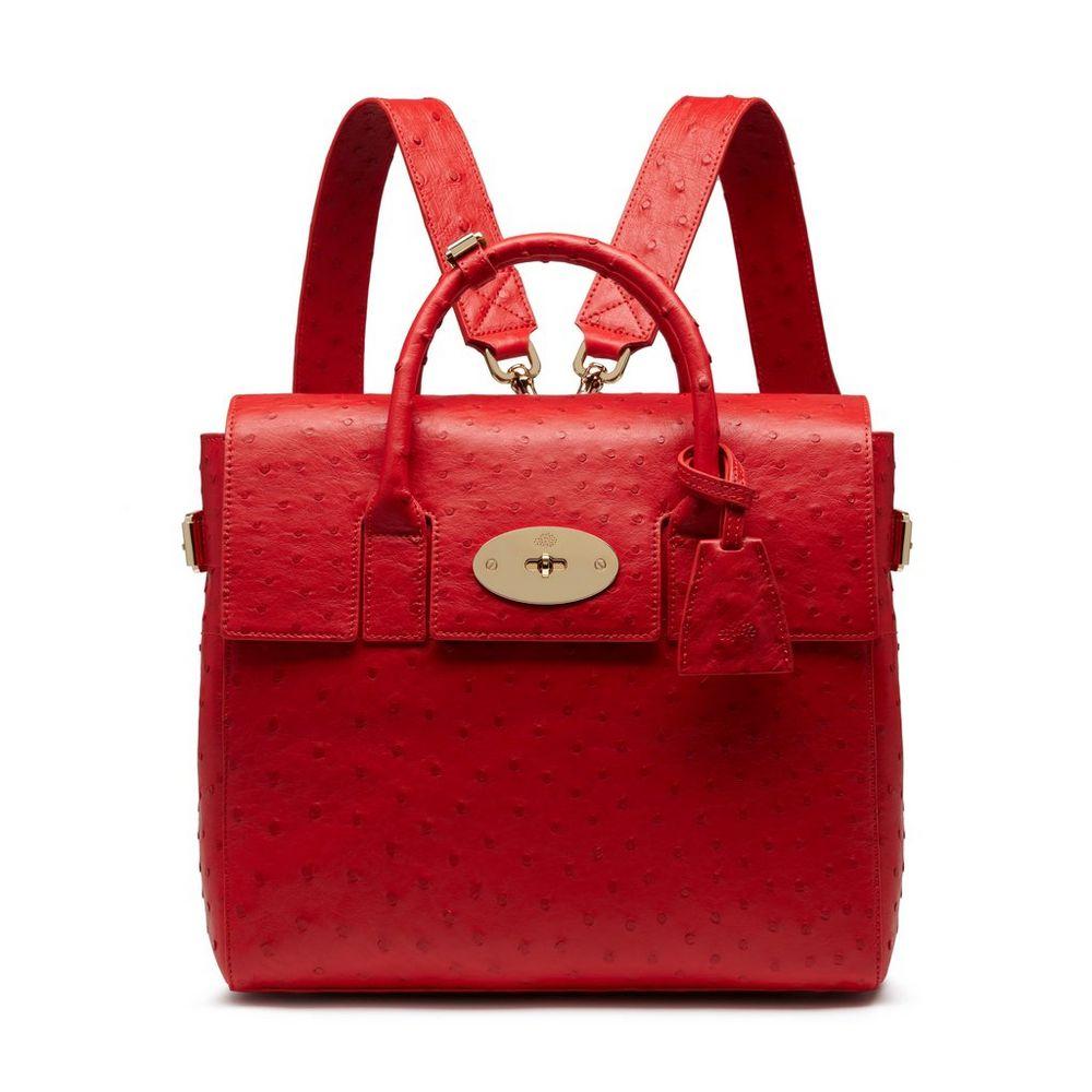 ... shop mulberry fiery spritz ostrich cara delevingne bag fce27 67ff6 ... 36a58af95654a