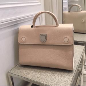 Dior Beige Diorever Tote Bag