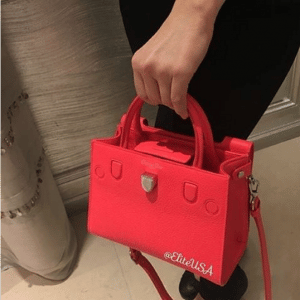 Dior Red Diorever Tote Bag