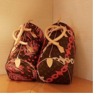 Louis Vuitton Monogram Jungle and Monogram Bay Speedy 30 Bags