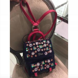 Dior Blue/Pink Embellished Stardust Backpack Small Bag 2