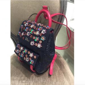 Dior Blue/Pink Embellished Stardust Backpack Small Bag