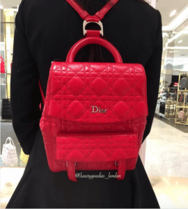 Dior Red Stardust Backpack Large Bag