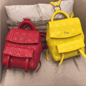 Dior Red and Yellow Stardust Backpack Large Bags