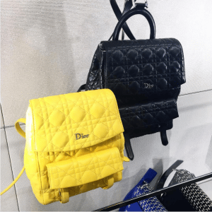 Dior Yellow Small and Black Large Stardust Backpack Bags