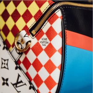 Louis Vuitton Multicolor Speedy Bag - Cruise 2017