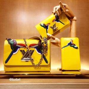Louis Vuitton Parrot Twist Wallet and Bag