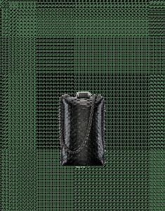 Chanel Black/Gold Python Kiss-Lock Minaudiere Bag