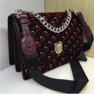Dior Burgundy and Beige Dior Print Fabric Diorama Satchel Bag 2