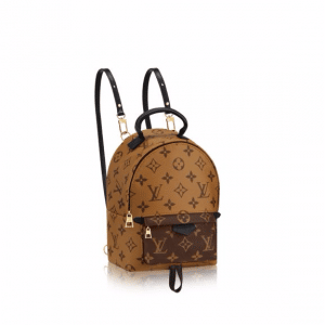 Louis Vuitton Monogram Reverse Canvas Palm Springs Backpack Mini Bag