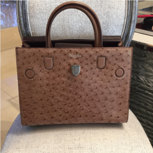 Dior Brown Ostrich Diorever Bag 2